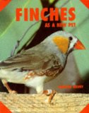 Finches As a New Pet
